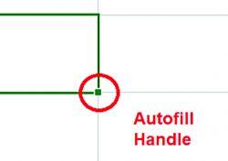 Autofill handle