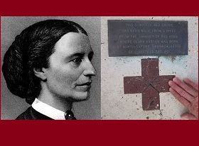 Red Cross: 'One woman alone'