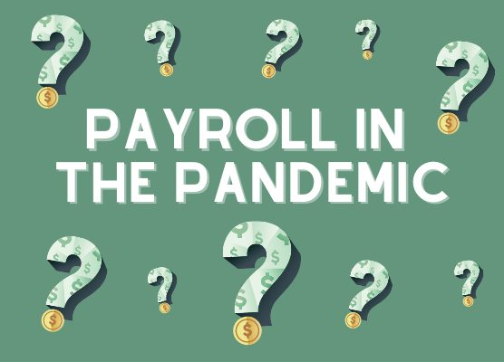 payroll in the pandemic, payroll 556x400